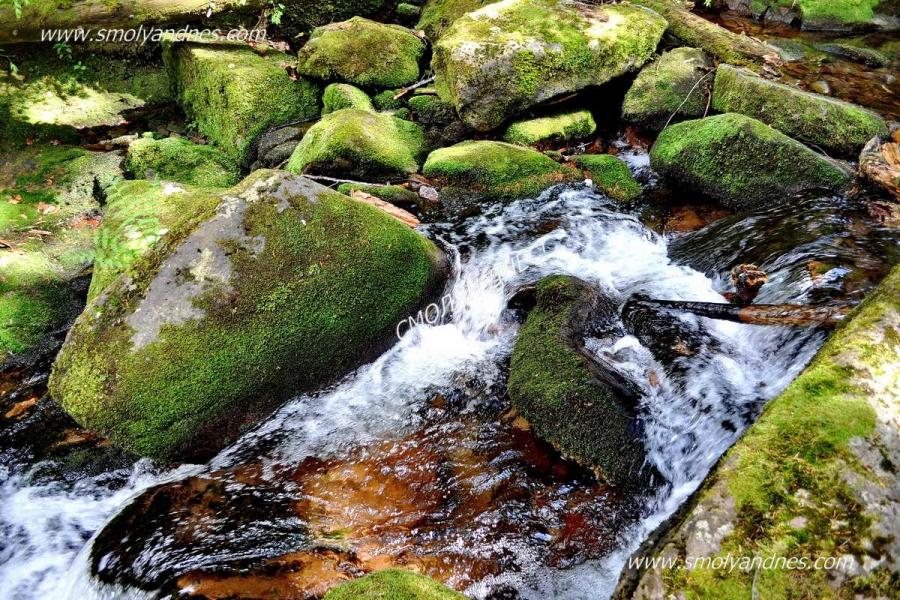 Маршрути до пещери, Каньона на водопадите и Проглед са включени в програма на Пампорово до края на седмицата