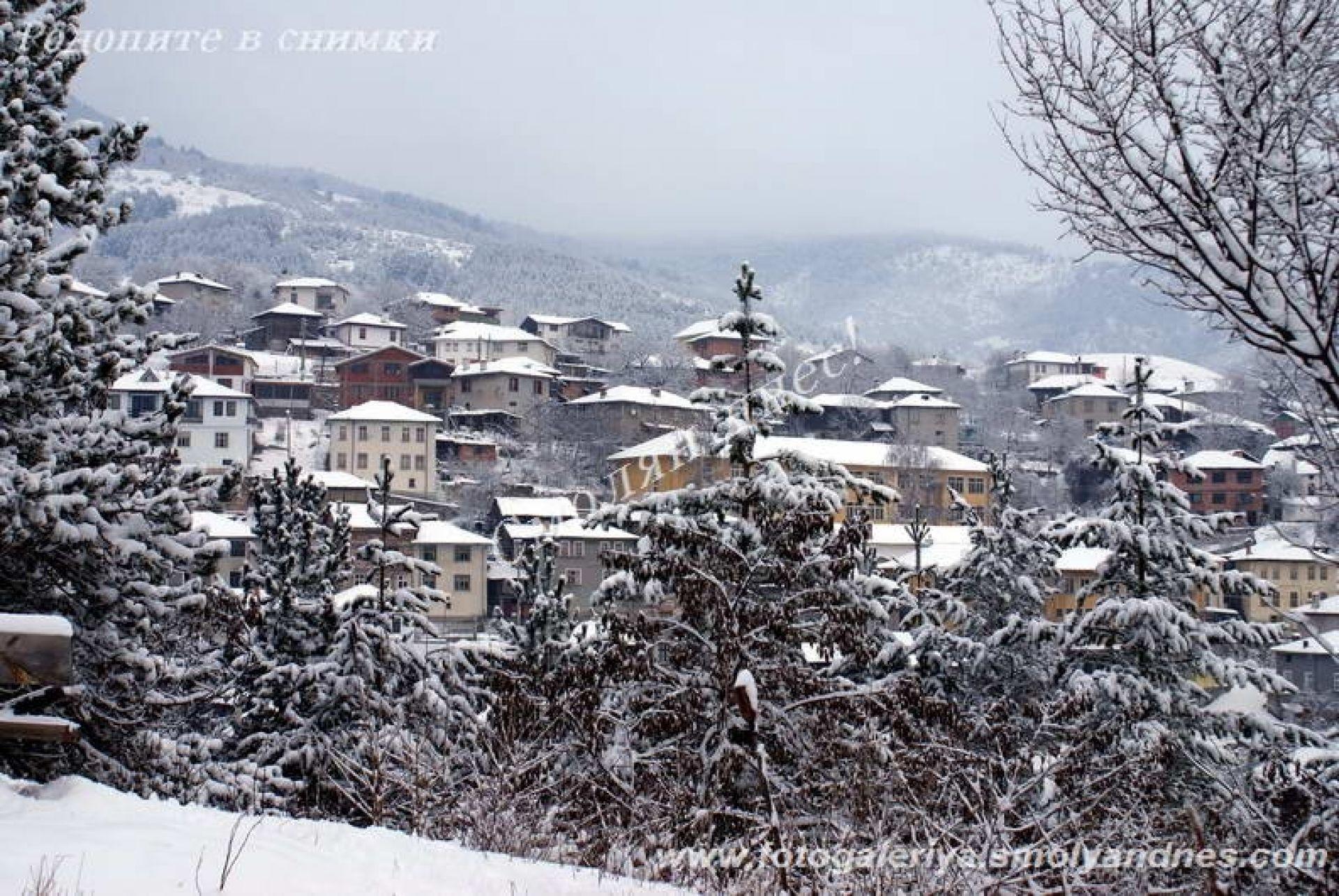 село Орехово