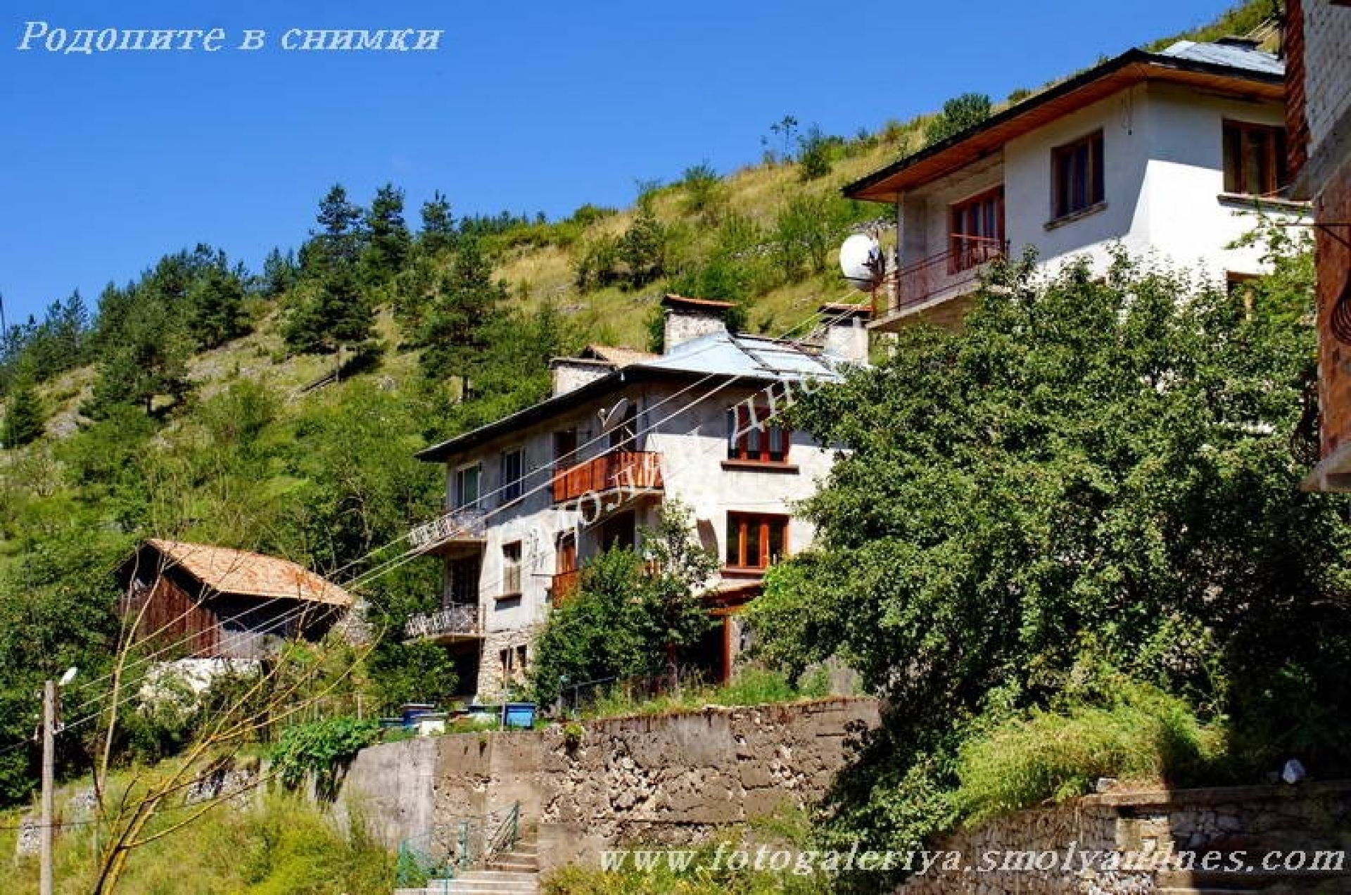 село Жребово