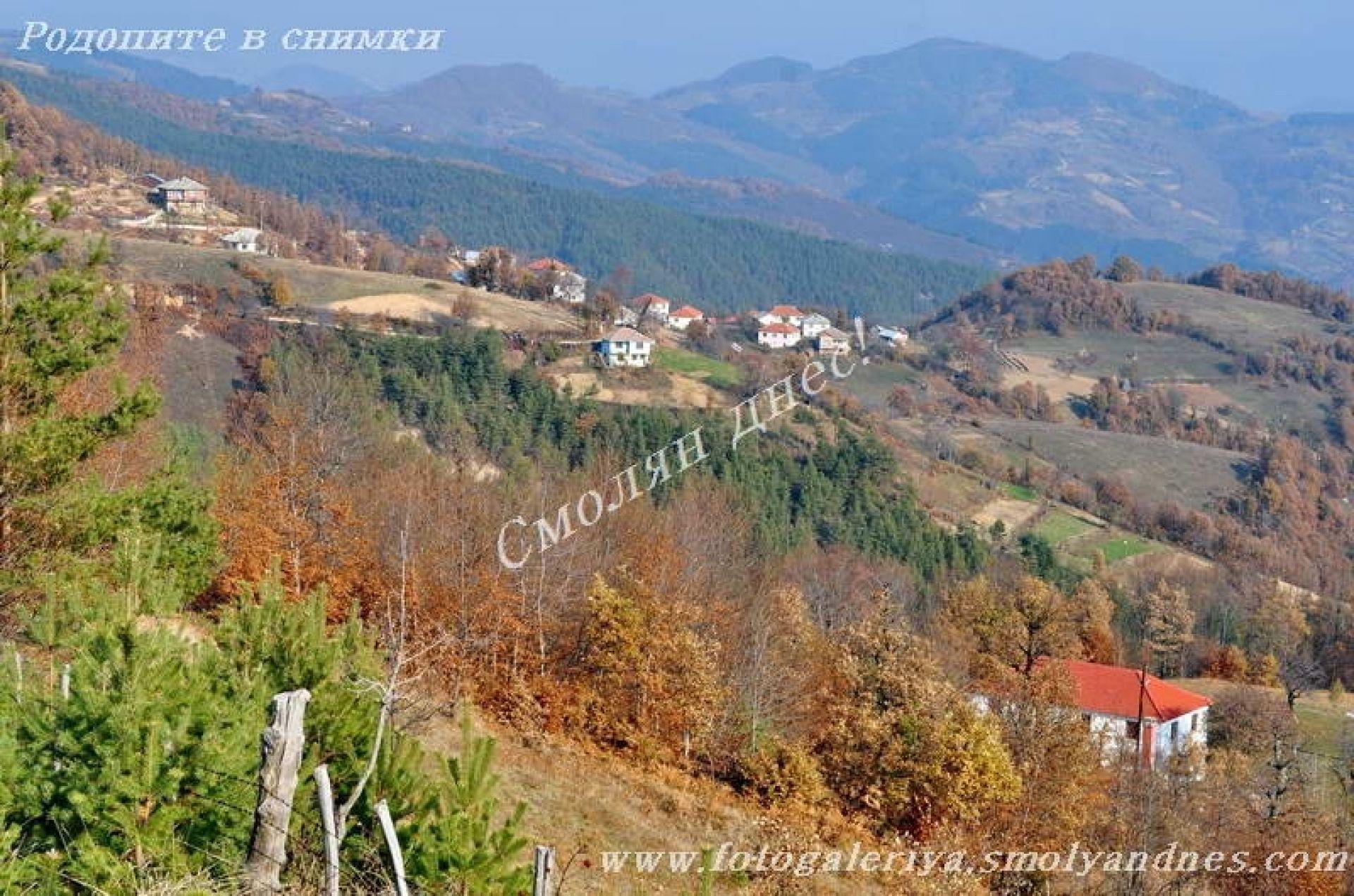 село Дуня