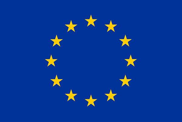Европейски избори: живеещите в чужбина европейци да могат да гласуват онлайн